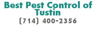 Best Pest Control of Tustin